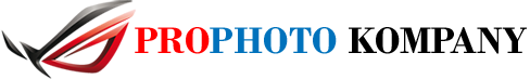 Професионален фотограф Лого